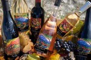 Cassis Photographe Corporate WE WINE! Vin